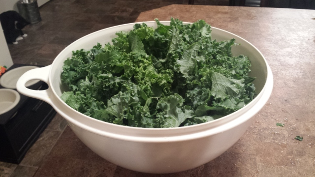 Massaged Kale was sooo good at that retreat I went to.
